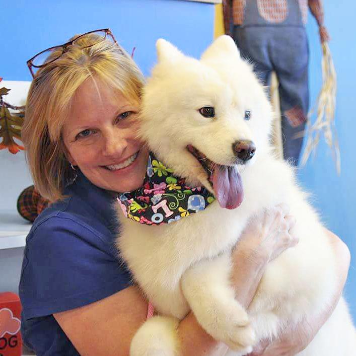 Bark 'N Bubbles Dog Wash & Grooming Salon | Fairfax, VA